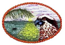 Hawks Nest Marathon